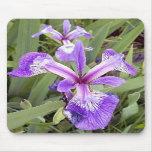 Iris púrpura 2 Mousepad Alfombrilla De Ratón