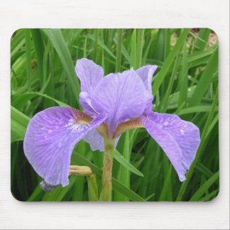 Iris púrpura alfombrillas de ratón