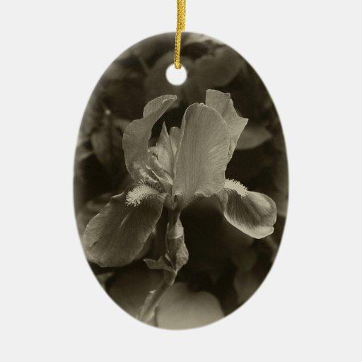 Iris púrpura Antiqued 1 Ornamento Para Arbol De Navidad