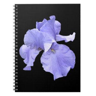 Iris púrpura barbudo alto cuadernos
