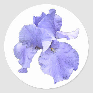 Iris púrpura barbudo alto pegatina redonda