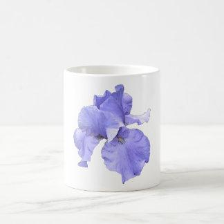 Iris púrpura barbudo alto taza clásica