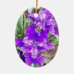 Iris púrpura con el ornamento de las gotitas de ag ornamentos para reyes magos