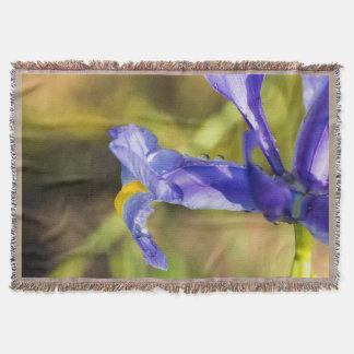 Iris púrpura con la manta del tiro de las gotas de
