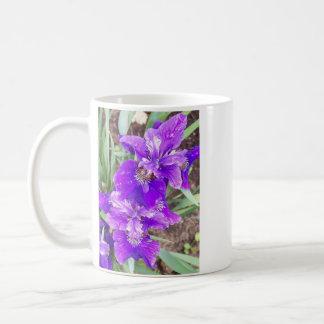 Iris púrpura con la taza de las gotitas de agua
