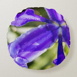 Iris púrpura con las gotas de agua cojín redondo