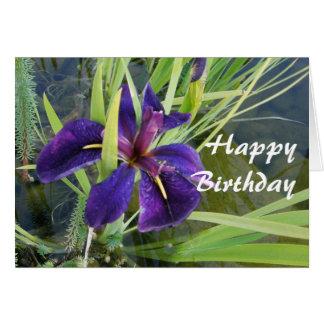Iris púrpura del agua tarjeta de felicitación