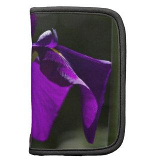 Iris púrpura del pantano con el fondo de Bokeh Planificadores