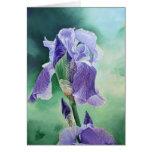 """""""Iris púrpura """" Felicitación"""