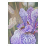 Iris púrpura felicitaciones
