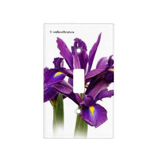 Iris púrpura imberbe cubierta para interruptor
