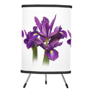 Iris púrpura imberbe lámpara trípode