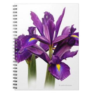Iris púrpura imberbe libro de apuntes