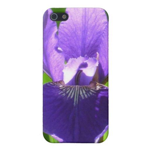 Iris púrpura iPhone 5 carcasa
