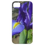 Iris púrpura iPhone 5 cárcasas