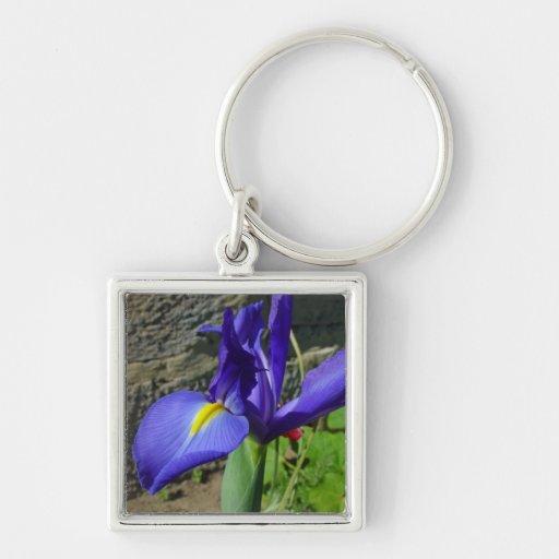 Iris púrpura llavero cuadrado plateado