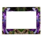 Iris púrpura marcos magnéticos para fotos