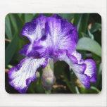 Iris púrpura Mousepad Tapete De Ratón