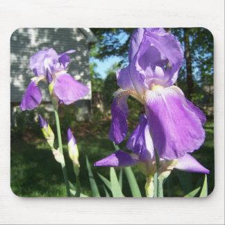 Iris púrpura Mousepad Tapetes De Ratones