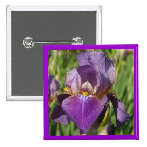 Iris púrpura oscuro de la lavanda pins