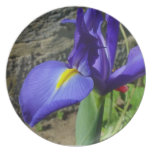 Iris púrpura platos de comidas