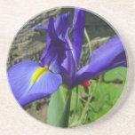 Iris púrpura posavasos personalizados