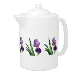 Iris púrpura rayado