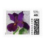 Iris púrpura sello