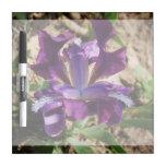 Iris púrpura tableros blancos