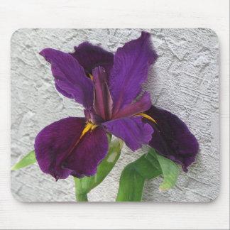 Iris púrpura tapete de ratón