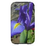 Iris púrpura tough iPhone 3 coberturas
