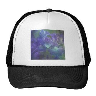 Iris púrpura y azul suave elegante hermoso gorras