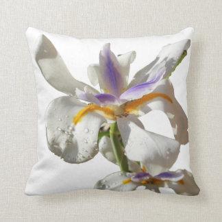 Iris púrpura y blanco cojín decorativo