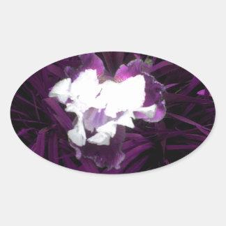 Iris púrpura y blanco calcomanía de ovaladas