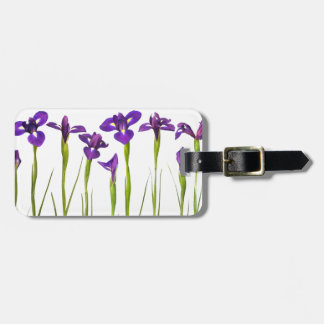Iris púrpuras aislados en un fondo blanco etiquetas para equipaje
