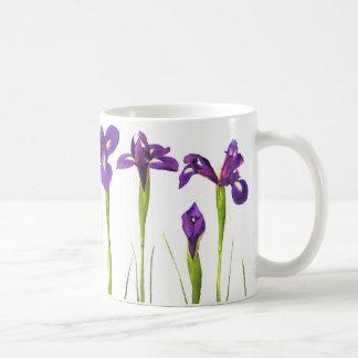 Iris púrpuras en el fondo blanco - iris floral taza de café