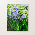 Iris púrpuras en los suburbios rompecabezas con fotos