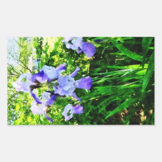Iris púrpuras en suburbios rectangular altavoz