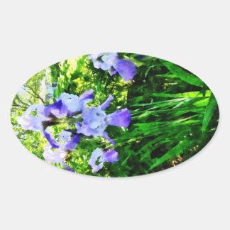 Iris púrpuras en suburbios calcomanías ovaladas