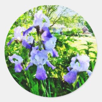 Iris púrpuras en suburbios pegatina redonda
