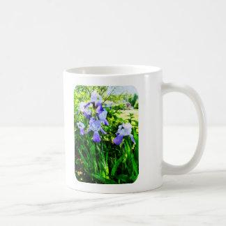 Iris púrpuras en suburbios taza