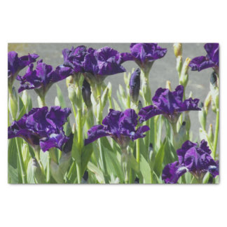 Iris púrpuras florales papel de seda pequeño