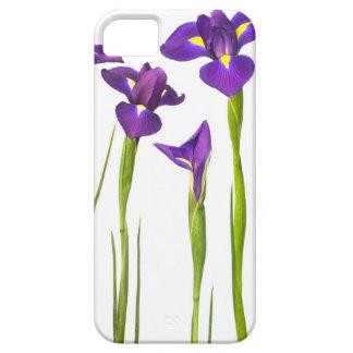 Iris púrpuras - plantilla modificada para iPhone 5 carcasas