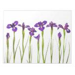 Iris púrpuras - plantilla modificada para requisit blocs de notas