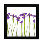 Iris púrpuras - plantilla modificada para requisit cajas de recuerdo