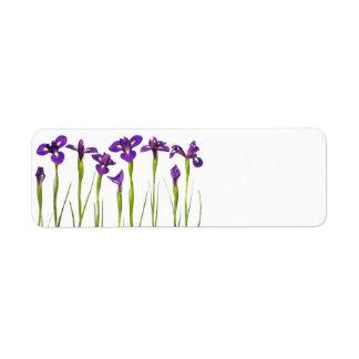 Iris púrpuras - plantilla modificada para requisit etiqueta de remite