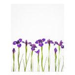 Iris púrpuras - plantilla modificada para requisit flyer personalizado