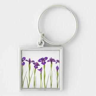 Iris púrpuras - plantilla modificada para requisit llavero cuadrado plateado