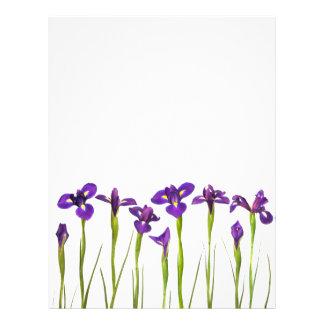 Iris púrpuras - plantilla modificada para requisit plantillas de membrete