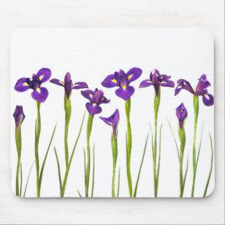 Iris púrpuras - plantilla modificada para tapete de ratones